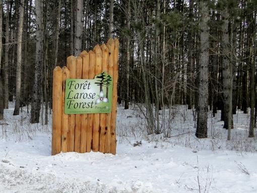 Larose Forest sign