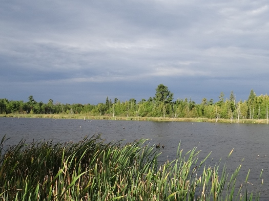 Dark skies across the pond