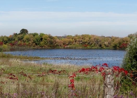 Giroux Quarry Pond
