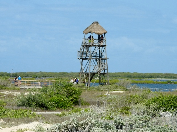 Observation Tower overlooking Laguna Colombia