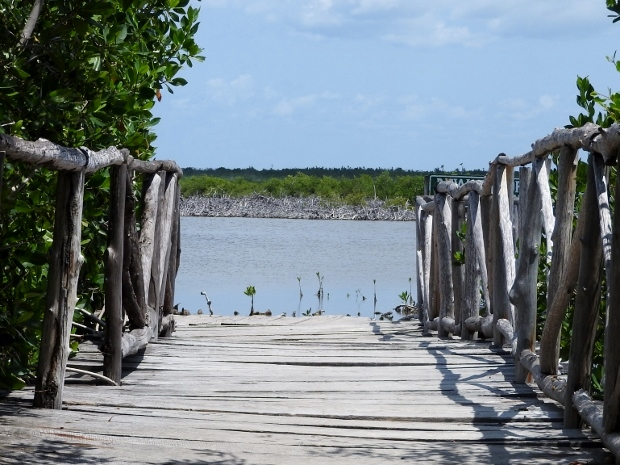 The dock at Punta Sur