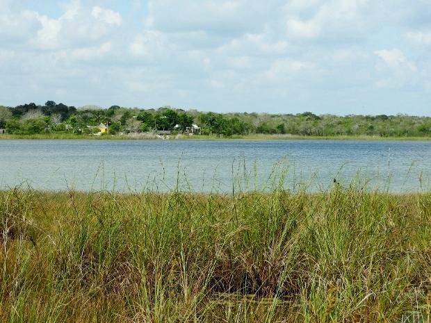 Laguna Coba